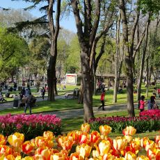 Baharın Tadını Daha İyi Çıkarmanızı Sağlayacak İstanbul'da Gidilesi Parklar