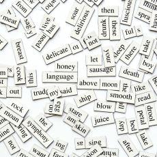 İngilizcede Telaffuzu Sık Karıştırılan Kelimelerin Doğru İfade Ediliş Biçimleri