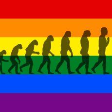 Eşcinseller Evrimsel Süreçte Neden Elenmedi?