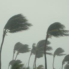 Estiğinde Yıkıp Geçen Kasırgalar Hakkında İlginç Detaylar