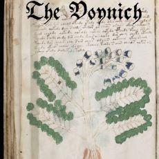 Bilinmeyen Bir Dille Yazılan Anlamı Hala Tam Olarak Çözülememiş Gizemli Kitap: Voynich El Yazması