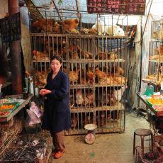 Çin'deki Hijyen Standardı Sorununu Gözler Önüne Seren Acayip Manzaralar