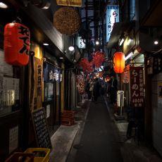 Japonya, Tarihi Boyunca Gerçekten de Dışarıya Kapalı Bir Toplum mu Oldu?