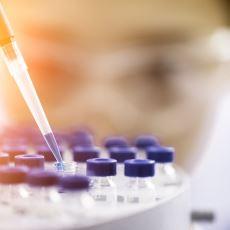 Bilim Dünyasından Heyecanlandıran Gelişme: Laboratuvar Ortamında Yeni Canlı Üretildi