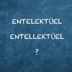 Entellektüel Kelimesinin Doğru Telaffuzu Neden Entelektüel?