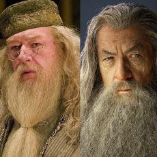 Yılların Tartışması Haline Gelen Müthiş Kıyaslama: Gandalf mı, Dumbledore mu?