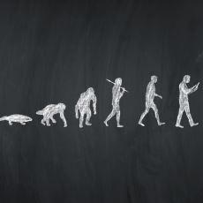 Evrim Teorisini Destekleyen Kanıtlar