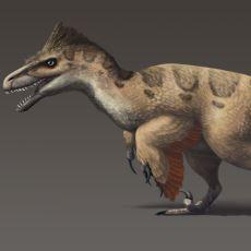 Kuşlara En Yakın Özellikleri Gösteren Dinozorlardan Biri: Utahraptor