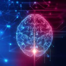 İnsan Beyninde İki Ayrı Bilincin Bulunduğunu Kanıtlayan İlginç Deney
