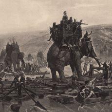 Savaşlarda Filler Nasıl ve Hangi Amaçlarla Kullanılırlar?