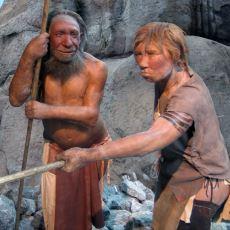 Farklı İnsan Türleri Neandertal İle Homo Sapiens Çiftleşmesinden Ortaya Çıkan Melez İskelet