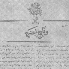 Türkçe Yayın Yapan İlk Gazete: Vekâyi-i Mısriyye