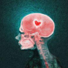 Aşık Olduğumuzda Vücudumuzun Verdiği Kimyasal Tepkiler