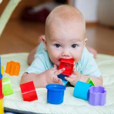 Bebekler Ellerine Geçen Her Şeyi Neden Ağızlarına Götürür?