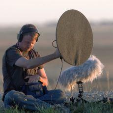 Birbirinden Farklı 150 Bin Sesi Barındıran Dünyanın En Büyük Doğal Ses Arşivi: Macaulay