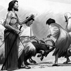 Sürekli Kullandığımız Günah Keçisi Deyimi Nereden Geliyor?