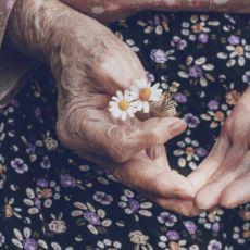 Yaşlı İnsanların Kendilerine Has Kokularının Sebebi