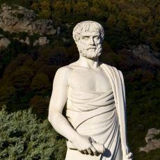 Batı Dünyasının En Önemli Filozofu Aristoteles'in Yaşamı, Temel Düşünce ve Öğretileri