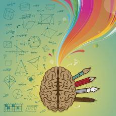 Bir İnsanın, Beyninin Sol Tarafı Komple Olmadan da Okuma Öğrenebilmesi