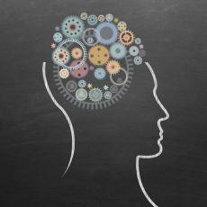 Harvard Üniversitesi Gelişim Psikoloğu Howard Gardner'ın Ortaya Attığı 9 Zeka Türü