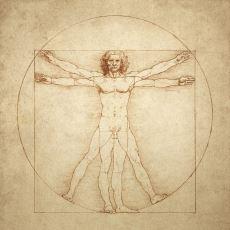 Da Vinci'nin Anatomi Araştırmaları Üzerine Çizdiği Altın Orana Sahip İnsan Eskizi: Vitruvius Adamı