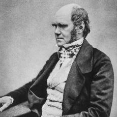 Charles Darwin'in Bulgularına Zamanında Erkeklerin Daha Çok Tepki Göstermesi