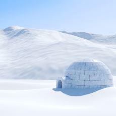 Sibiryalı Çiftçileri Sebepsiz Yere Bir Anda Delirten ve Kara Doğru Çırılçıplak Koşturan Sibirya Histerisi