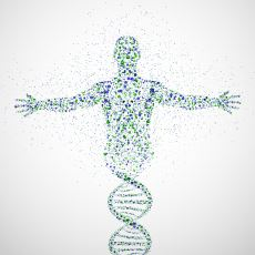 Vücudumuzda Bulunan Atomların 200 Milyarının Bir Zamanlar Einstein'a Ait Olması
