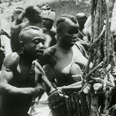 2000'li Yıllarda İlk Kez Dinle Tanışıp Müslümanlığı Seçen Afrika Kabilesi Pigmeler ve İlginçlikleri