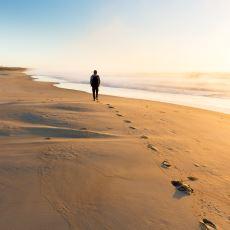 Zor Zamanlarda İnsanın Derdini Dindiren, Terapi Niteliğinde Aktiviteler