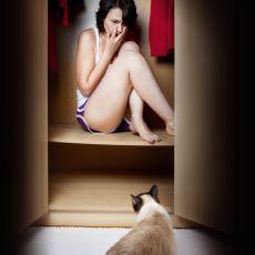 Muzdariplerine Hayatı Zehir Eden Enteresan Kedi Korkusu: Ailurofobi