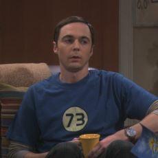 """73 Sayısının """"Biricik Sheldon Asalı"""" Olarak Matematik Literatürüne Girmesi"""