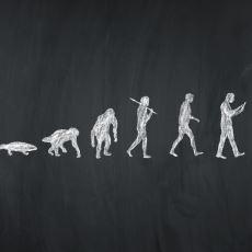 Evrimin Sonunun Nasıl Olabileceğiyle İlgili Ufkunuzu Açacak Bir Tahmin