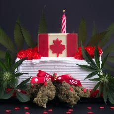 Keyif Amaçlı Esrar Kullanımının Yasallaştığı Kanada'da Yasaya Dair Detaylar