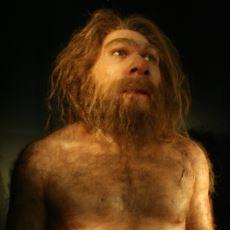 Neandertallerin Anatomik Yapılarına Dair Sıkça Duymadığınız Bilgiler