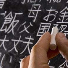 Türkçede ve Japoncadaki, Şaşırtıcı Derecede Birbirine Benzeyen Deyimler