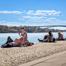 İsveç Neden Refah Seviyesi En Yüksek Ülkelerden Biri?