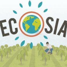 Yaptığınız Her Arama İçin Dünya'nın Bir Yerine Ağaç Diken Arama Motoru: Ecosia