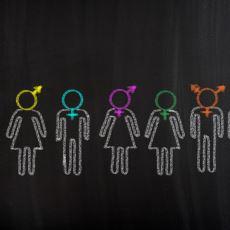 Cinsel Kimliklerin Toplumsal ve Psikolojik Olarak Şekillendiğini Savunan Queer Teorisi