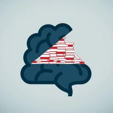 Nörobilime İlgisi Olanların veya Aktif Olarak Nörobilimle Uğraşan Kişilerin Okuması Gereken Kitaplar