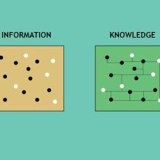 Knowledge ile Information Arasındaki Fark Nedir?