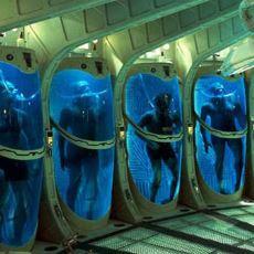 Ölümden Sonra Bedeni Dondurarak Teknoloji İlerlediğinde Çözmeyi Vadeden Ürkünç Cryonics Projesi