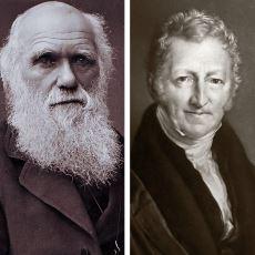 Kıtlığı Tanrının Bir Lütfu Gibi Gören Ekonomist Robert Malthus'un Darwin'i Derinden Etkilemesi