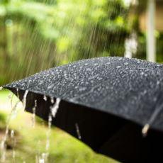 Şemsiyelerin Genelde Siyah Renkte Olmasının Sebebi
