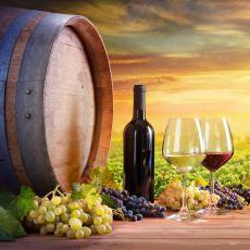Amerika ve Fransa'nın Şarap Üretiminde Birbirlerinden Aldıkları Üzüm Bağlarını Kullanması