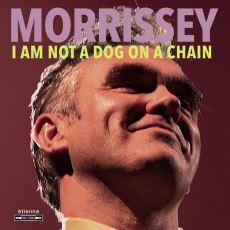 Yeni Morrissey Albümü I Am Not a Dog on a Chain'in Detaylı İncelemesi