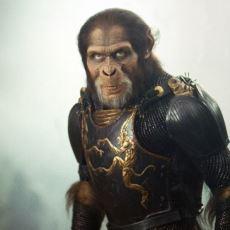 Planet of the Apes Filminin Adında Neden Maymun Anlamına Gelen Monkey Yerine Ape Bulunuyor?