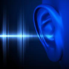 İnsanların Ses Tonu Arasındaki Farkı Yaratan Olay Ne?