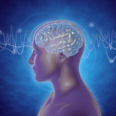 1920'lerde Elektroensefalograf Cihazı ile Keşfedilen Beyin Dalgaları ve Özellikleri