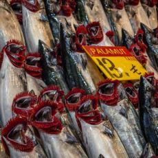 Çok Kanlı Bir Balık Olan Palamutu Temizlemeden Önce Yapılması Gerekenler